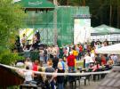 Фестиваль «Пикник в городе»